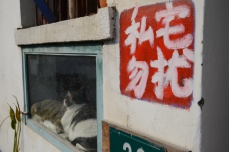 """Signs say, """"Private Property, Do Not Disturb,"""" in response to the amount of tourists that crowd Zhu Jia Jiao."""
