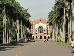 NTU's campus entrance, with the signature rows of tall palm trees and vintage architecture.